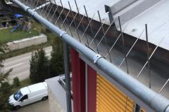 Taubenabwehrsystem Dachrinnenspikes