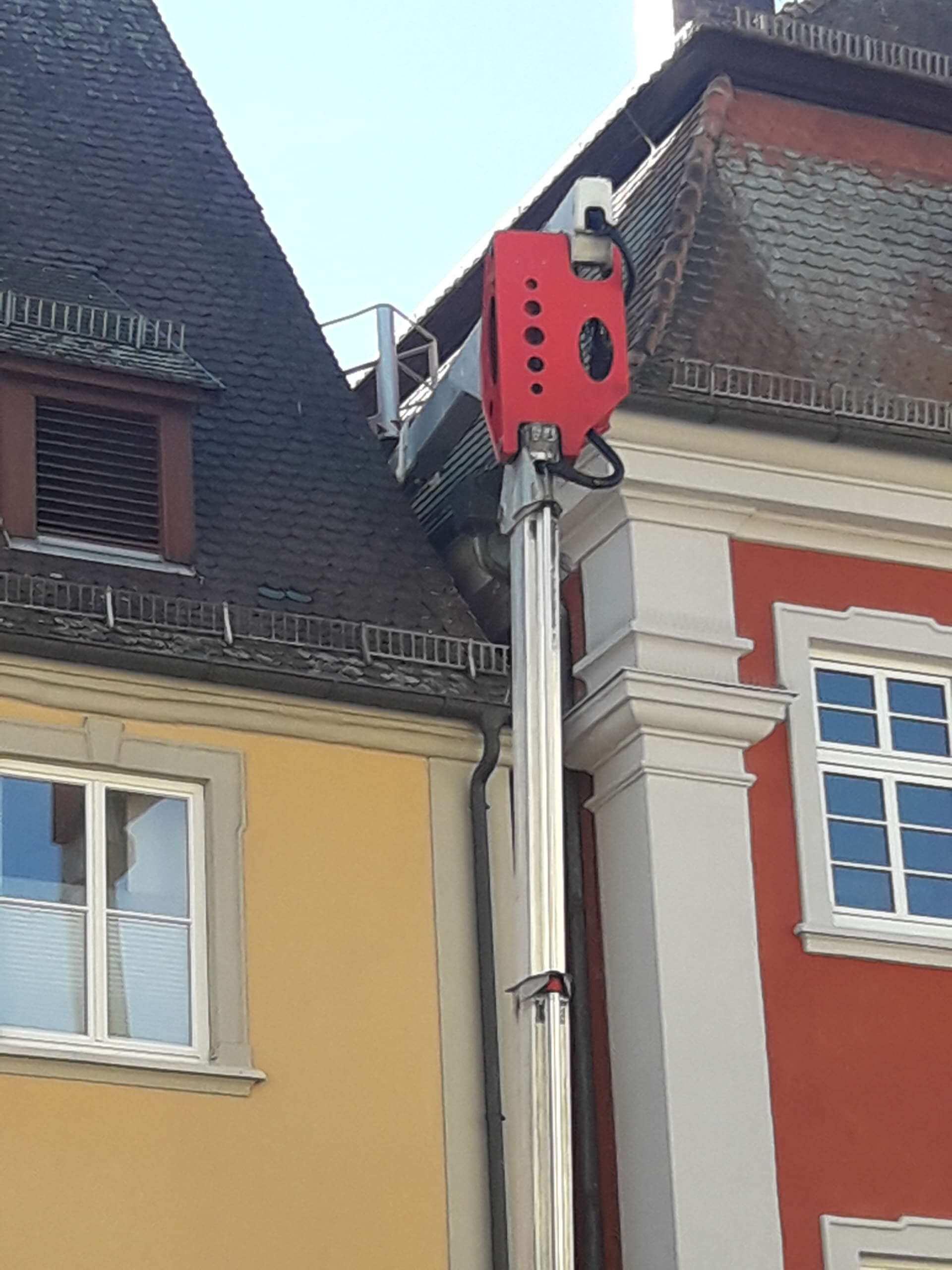 Vogelabwehr Rathaus